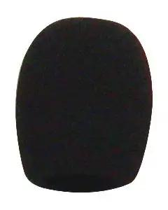 Electro Voice WSPL-1