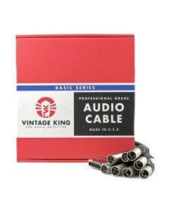 Vintage King Basic Series DB25 - XLRM - 10'