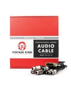Vintage King Project Series DB25 - XLRF - 10'