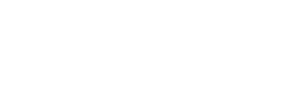 Vintage King Pro Audio Hall of Fame logo